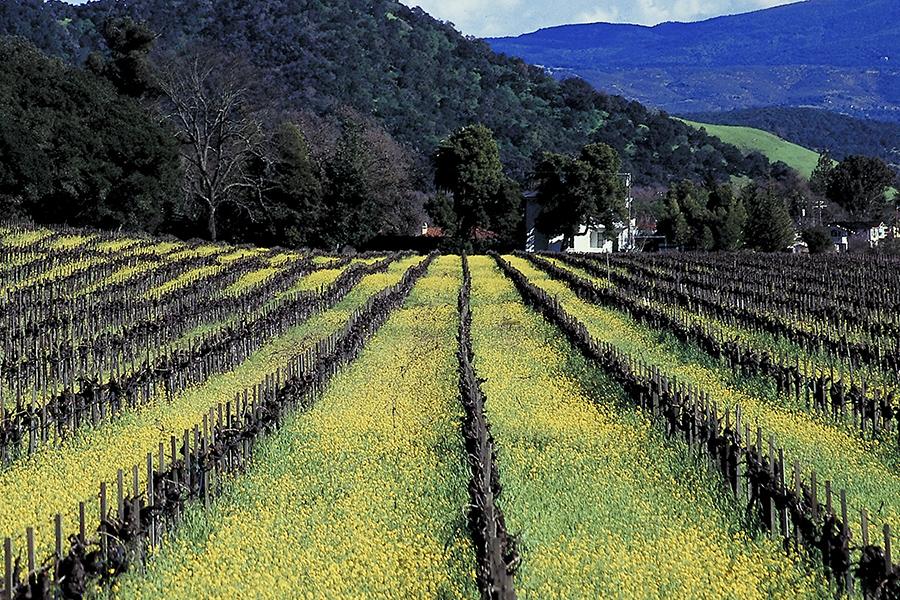 Il turismo in Campania, punti di forza e leve per lo sviluppo del territorio