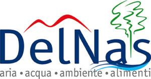 delnas logo