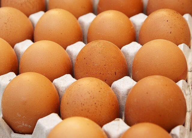 Agriovo: «Le uova dei nostri allevamenti sono sicure» - Costozero, magazine di economia, finanza, politica imprenditoriale e tempo libero - Confindustria Salerno