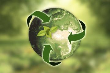 Ambiente e Sostenibilità: l'impegno dei GI